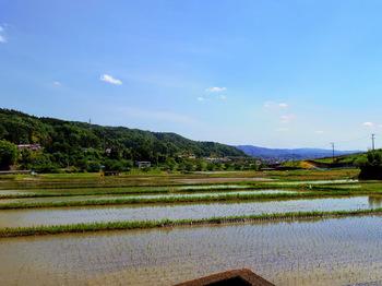 心地よい田園風景