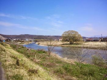 土岐川沿いの風景