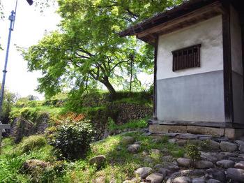 門横の立派な石垣